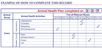 3 Animal Health Plan 2017 (Blank Template)